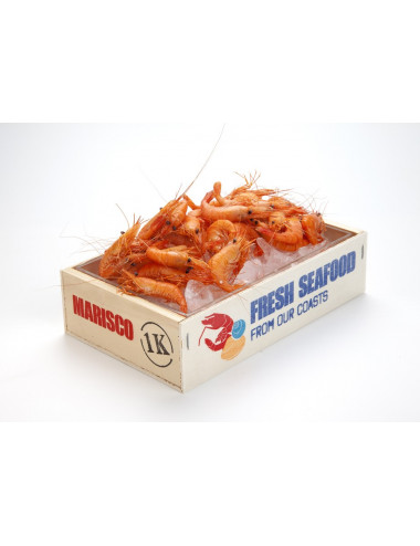 Cagette fruits de mer imprimé - Lot de 8
